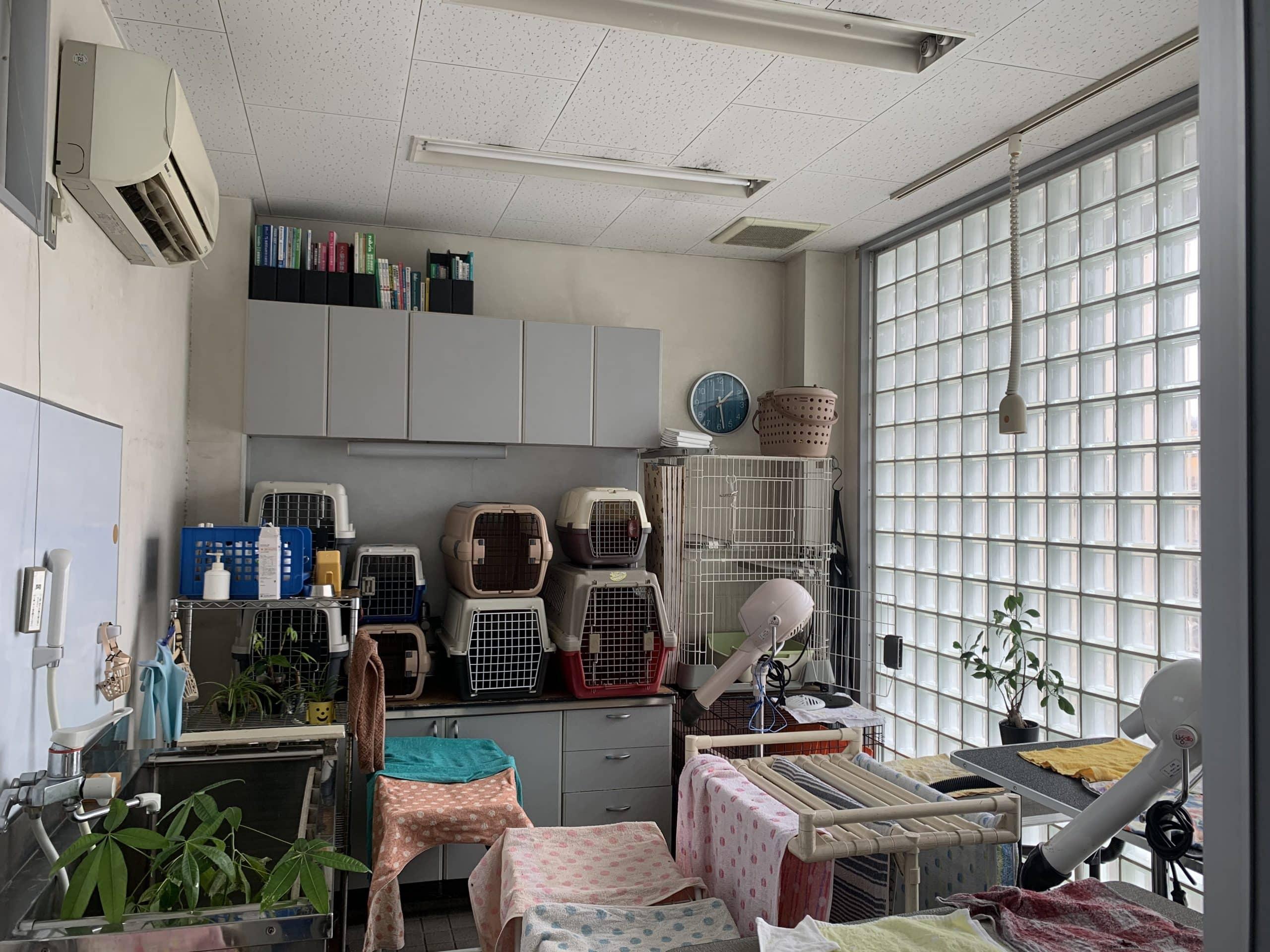 トリミング室 ひらた動物病院 広島