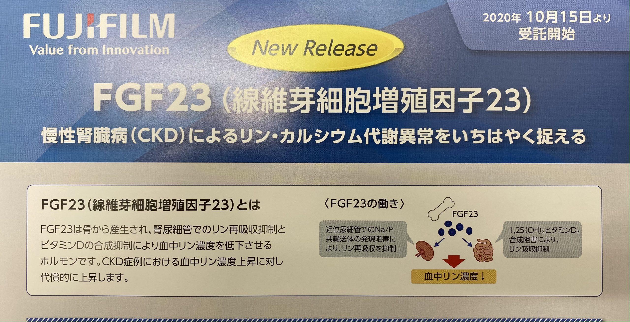 FGF-23セミナー 腎臓病